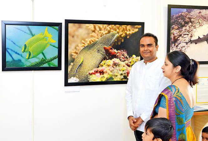 Aditya Havelia & Shatakshi Havelia (BCCL/ Vishnu Jaiswal)