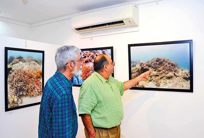 Dr Shobit Chavala (L) and Dr Rajat Dhesi admire a picture (BCCL/ Vishnu Jaiswal)