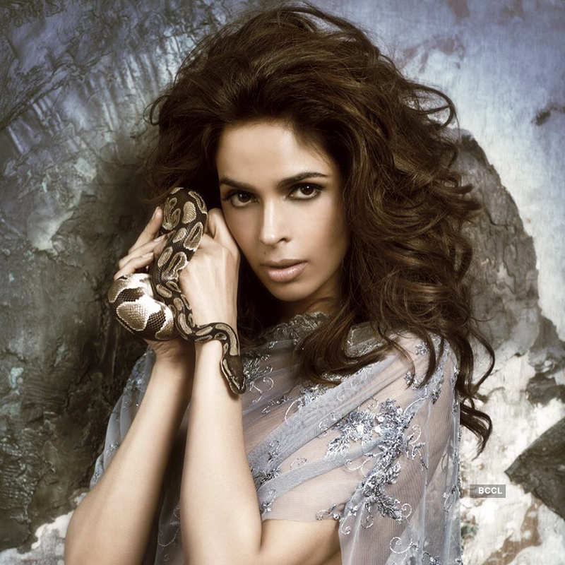 Mallika Sherawat is steaming up the cyberspace with her bold photoshoots