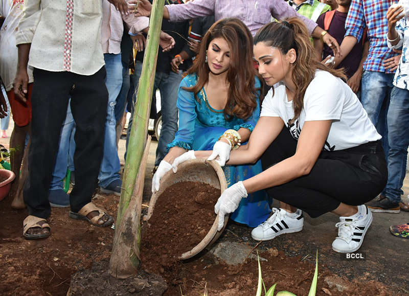 Celebs participated in tree plantation drive