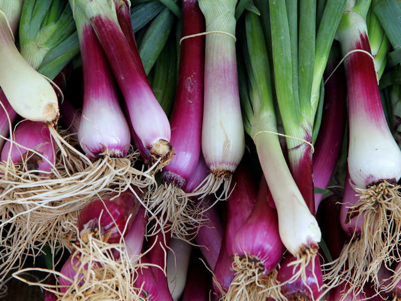 10 Reasons Why Spring Onions Should Be Included In All Your Recipes The Times Of India