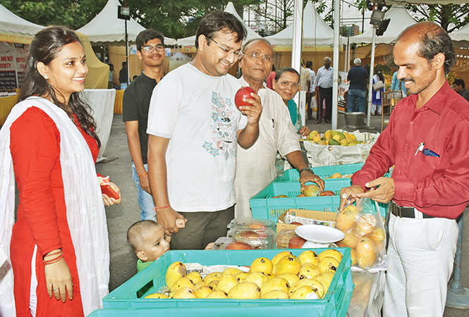 People bought different varieties of mangoes at the festival (BCCL)