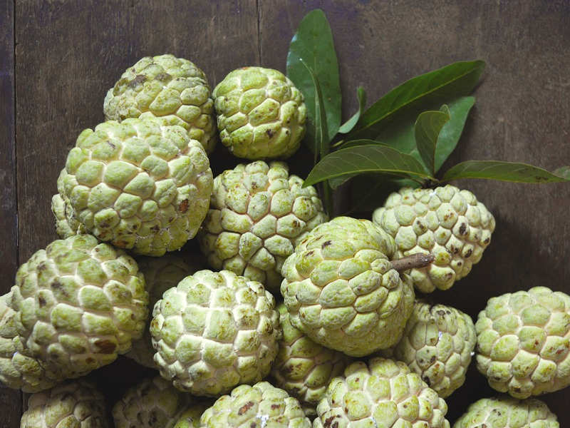 Image result for custard apple in india