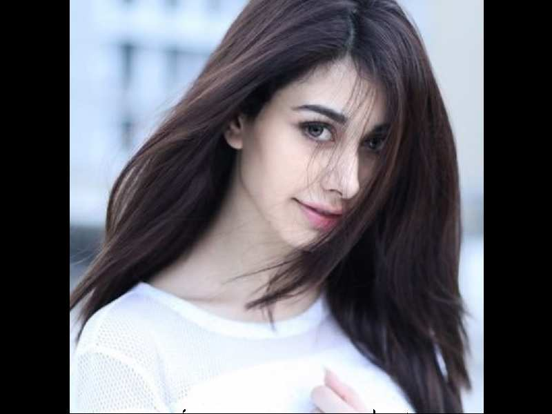 Loveratri Heres How Warina Hussain Landed A Leading Role In Salman Khans Film