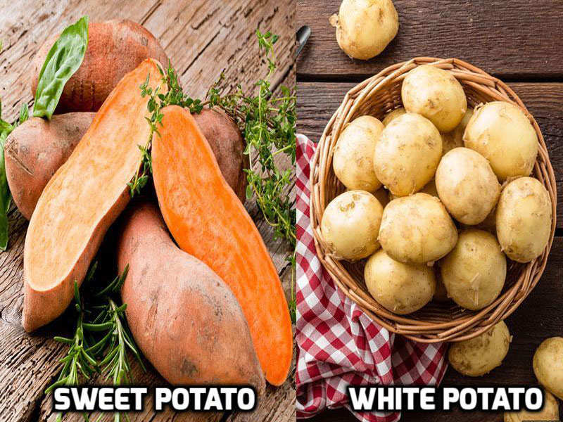 What's the difference between sweet potato and white potato
