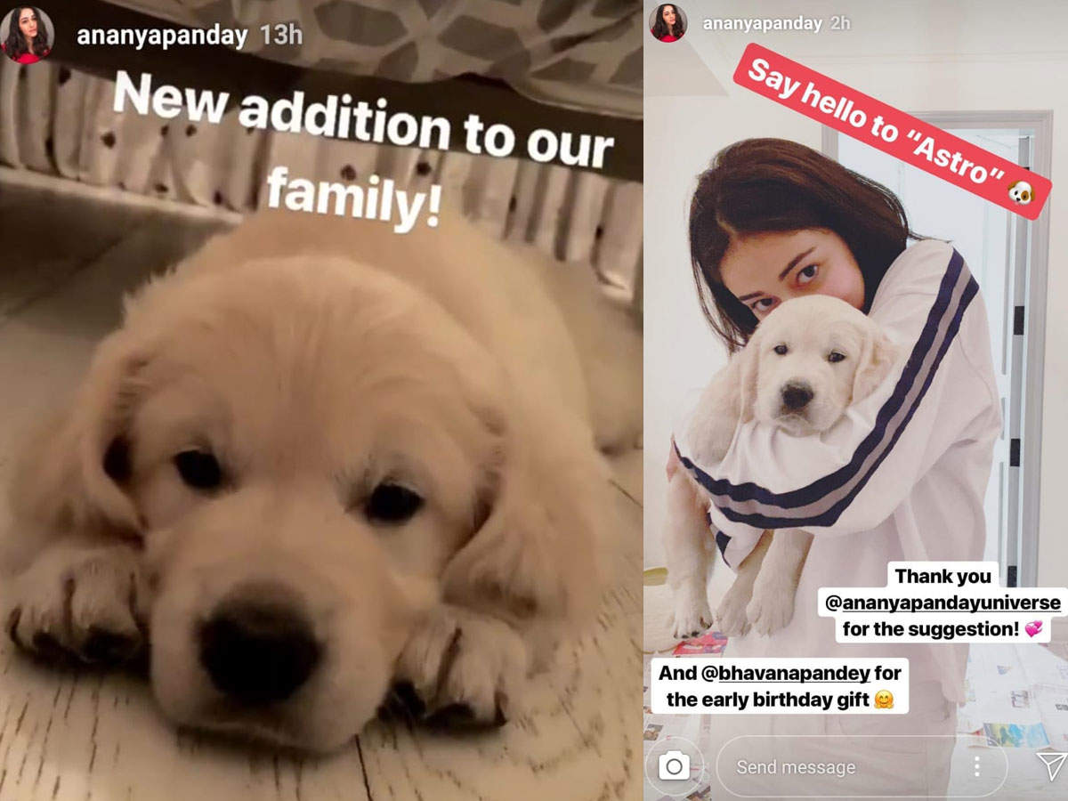 Ananya Panday S Mom Gifts Her A Cute Pooch For Her Birthday