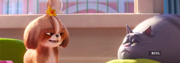 The Secret Life Of Pets 2 Movie Review 3 5 5 Critic Review Of The Secret Life Of Pets 2 By Times Of India