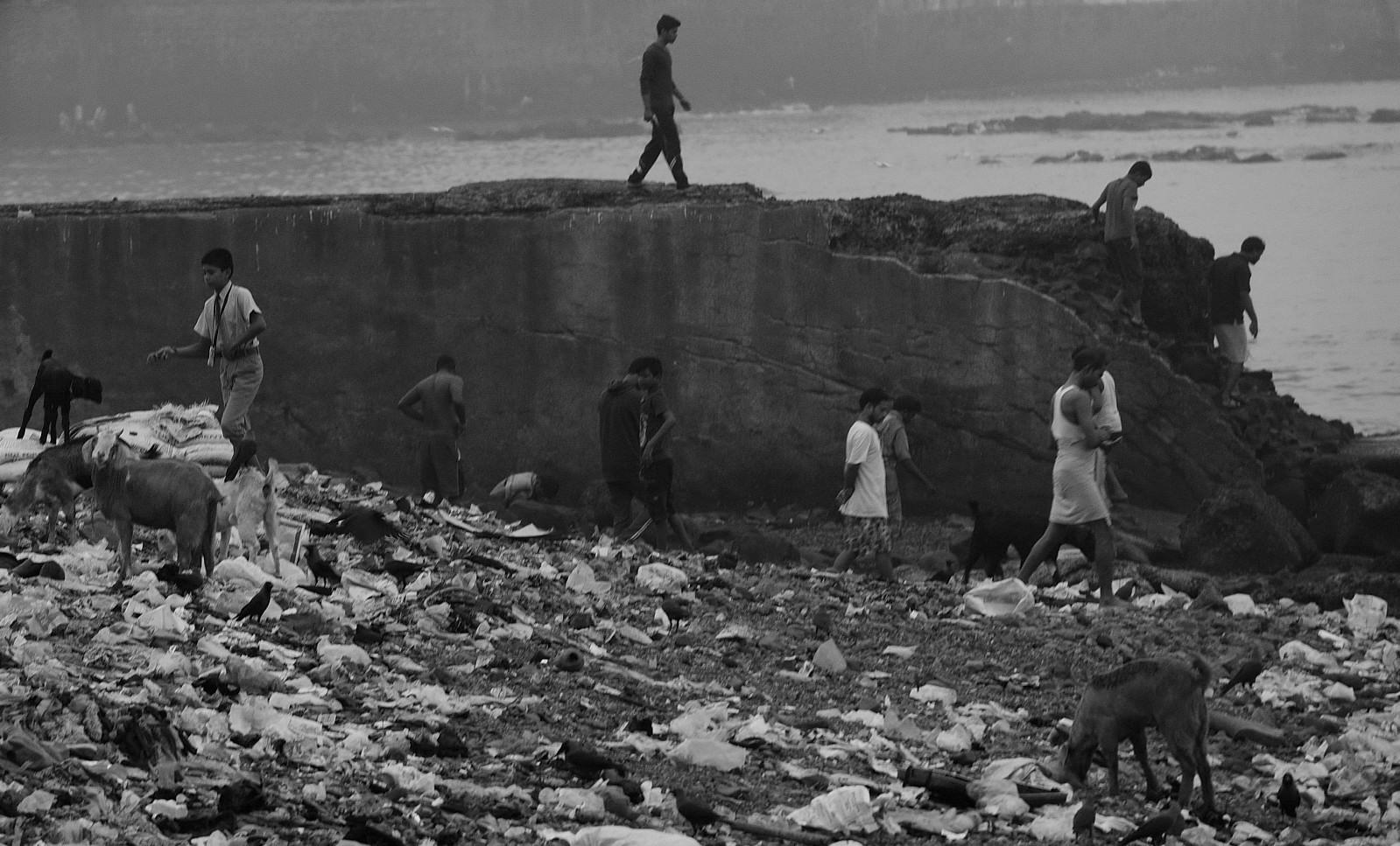 Watch: Is Mumbai free of open-defecation?