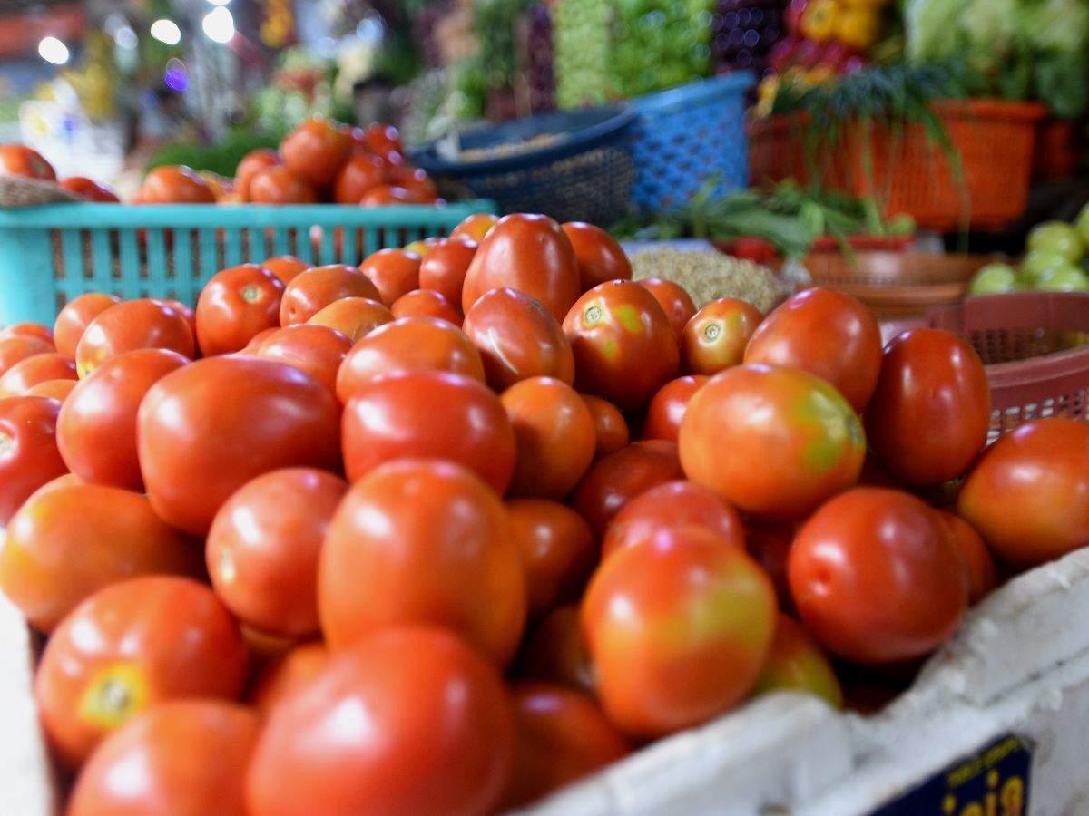 Bt18_fruit_tomato
