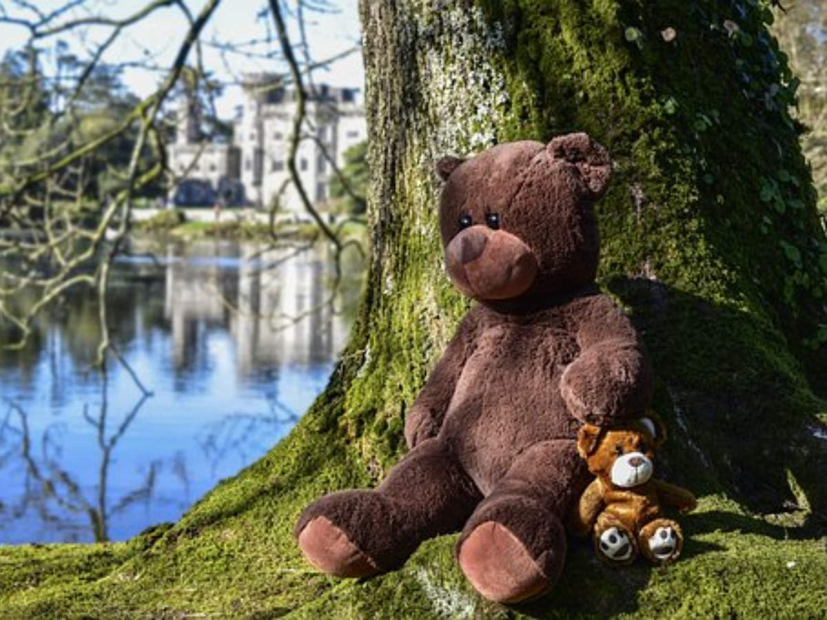 Happy Teddy Day 2019 wishes, cards, greetings