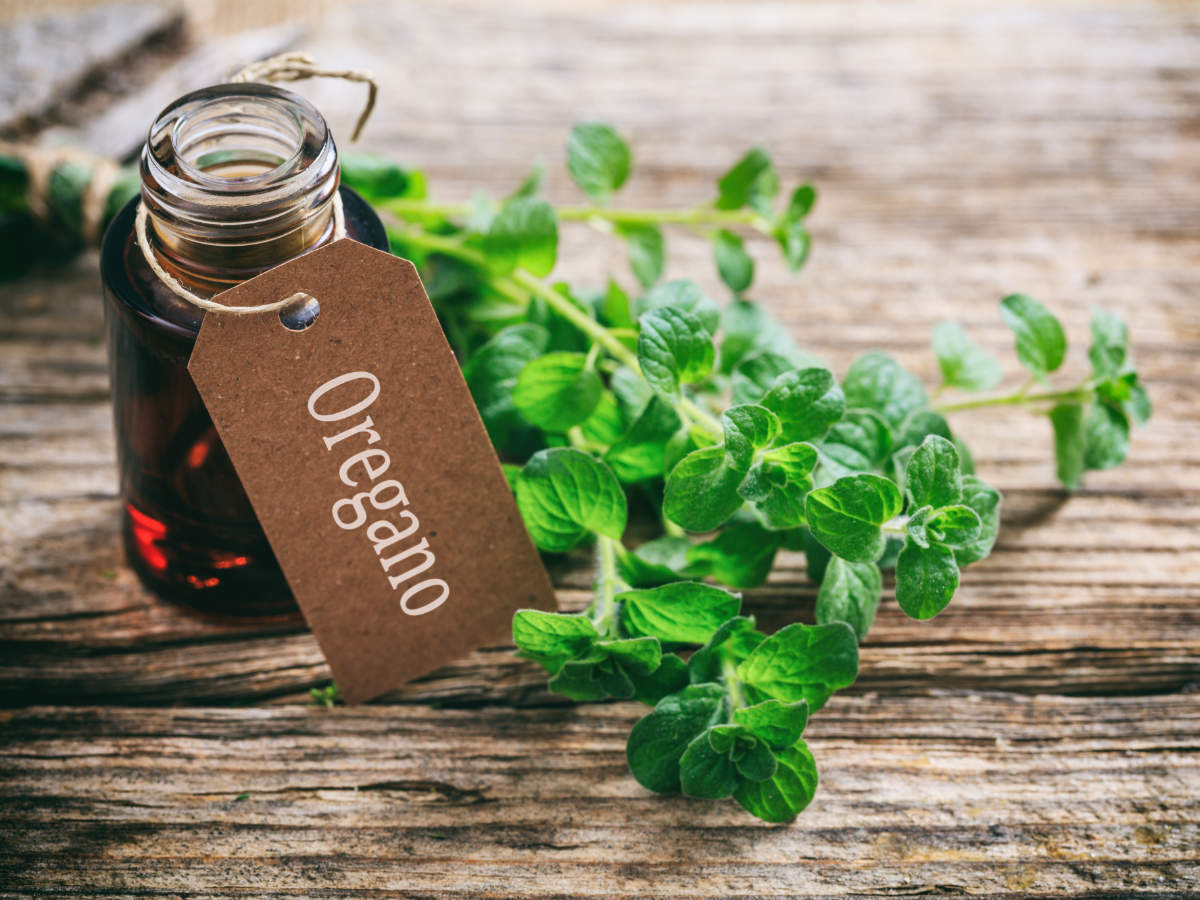Oregano Oil:  For Staph Infection Remedy