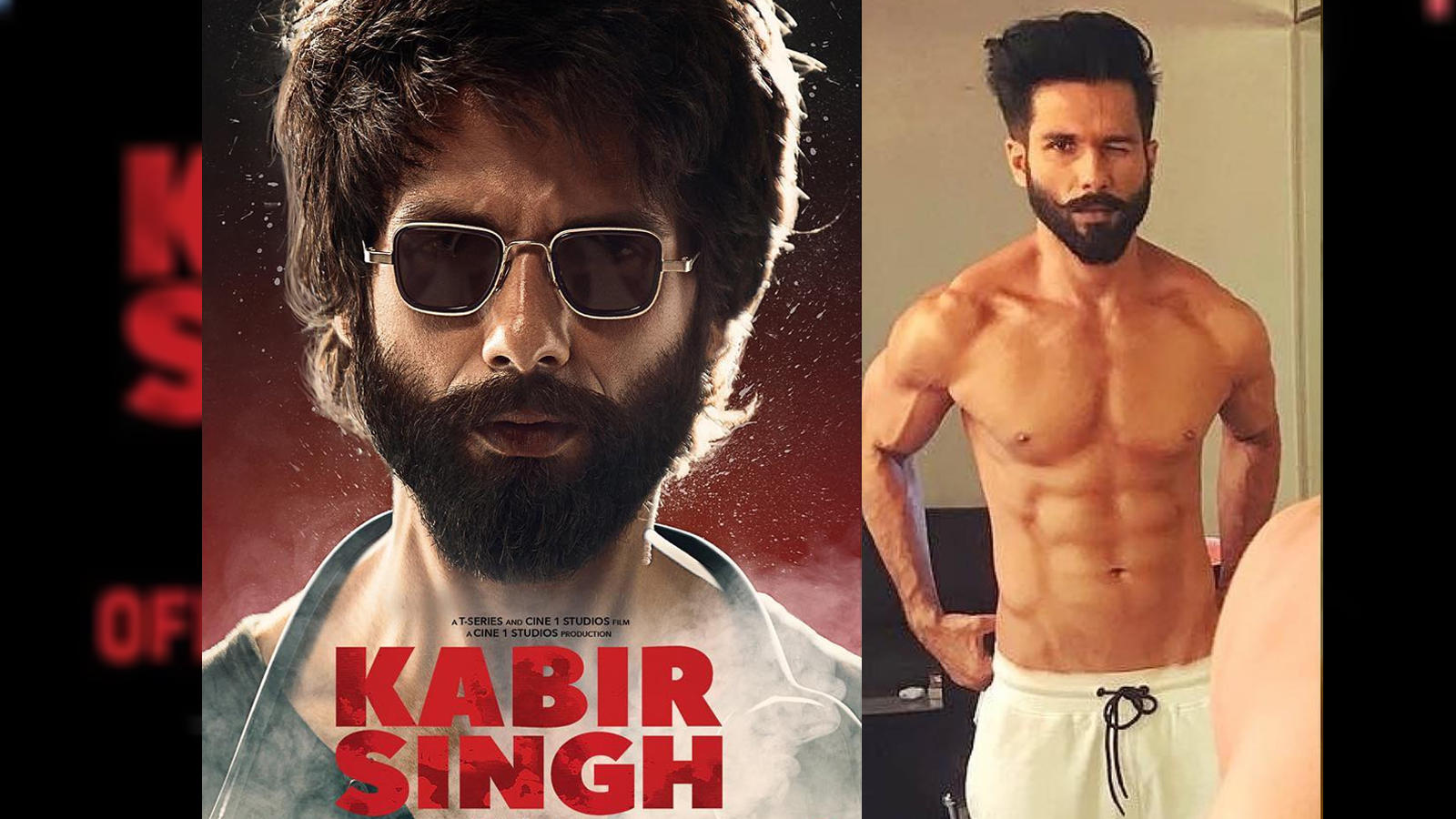 Shahid Kapoor finds 'Kabir Singh' commercially appealing