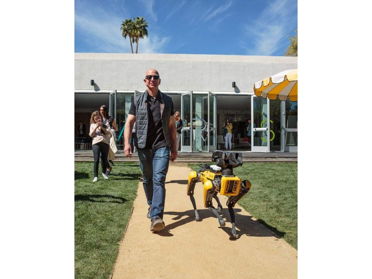 """A """"robot dog"""""""