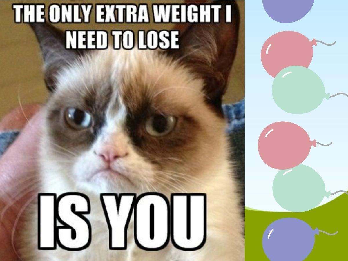 grumpy cat meme (1)
