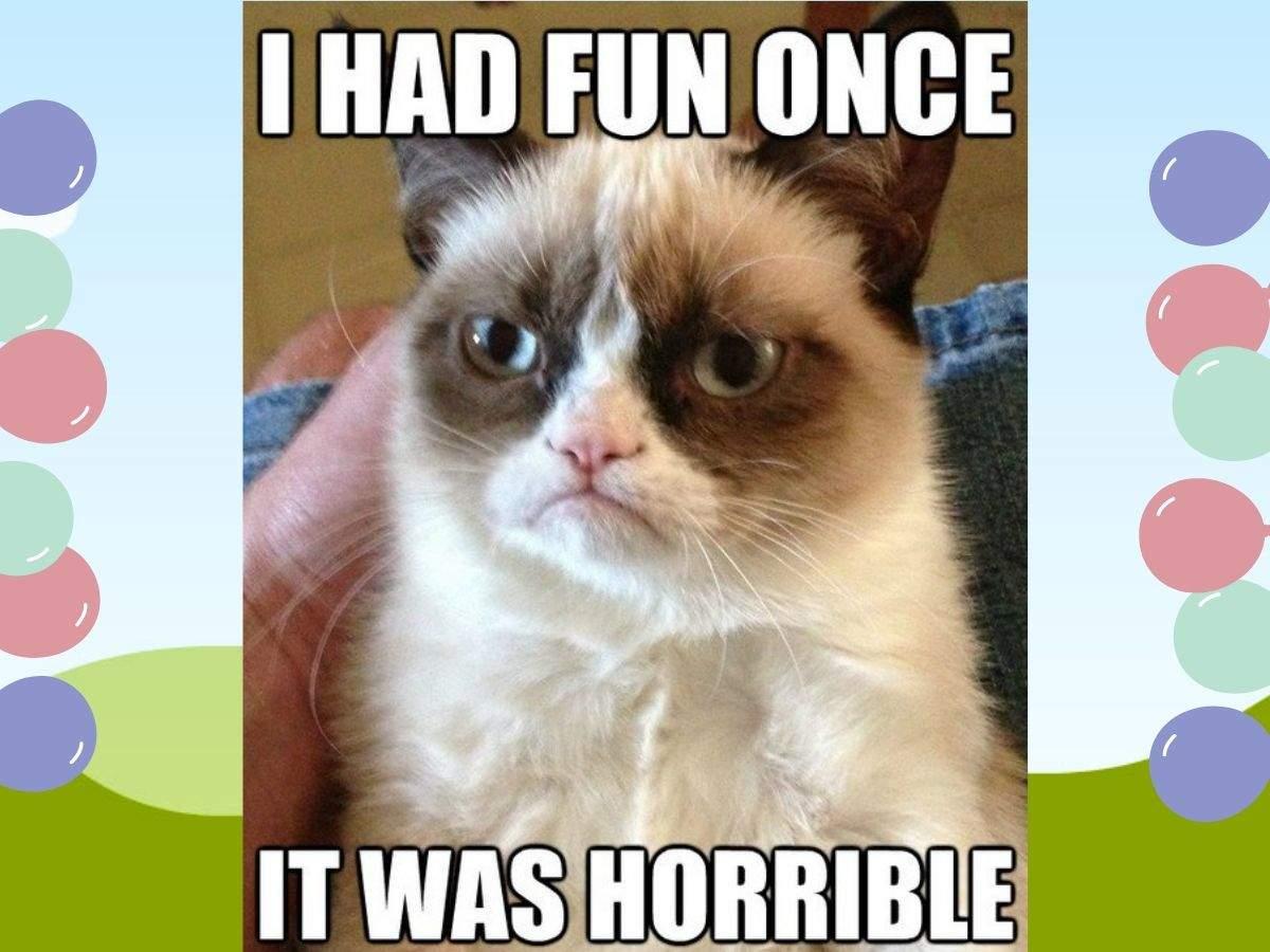 grumpy cat meme (5)