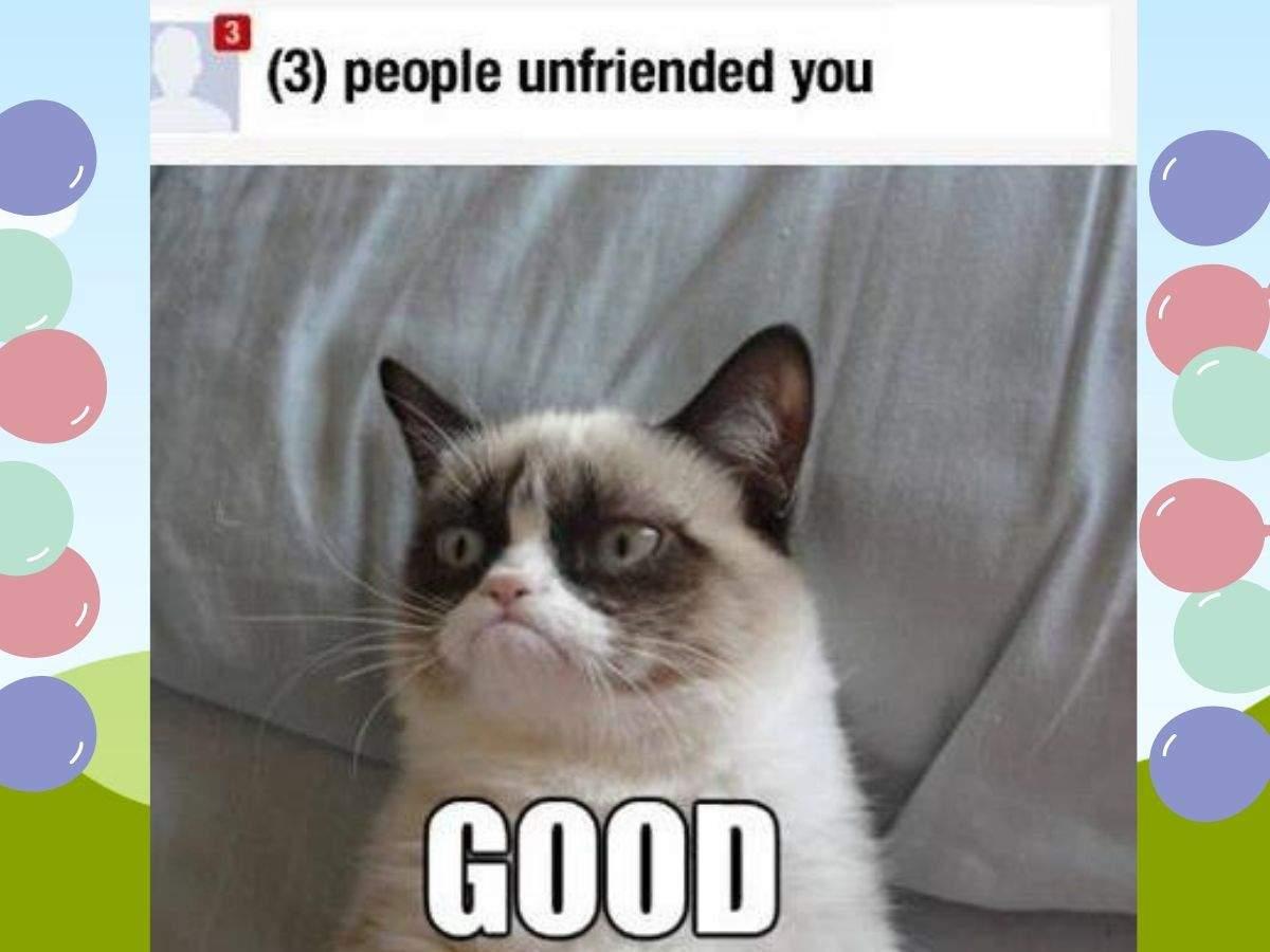 grumpy cat meme (6)