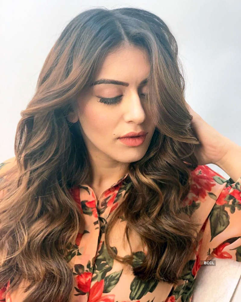 Hansika Motwani is making heads turn with her glamorous pictures
