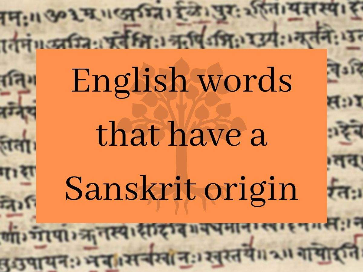 English Words That Have A Sanskrit Origin The Times Of India
