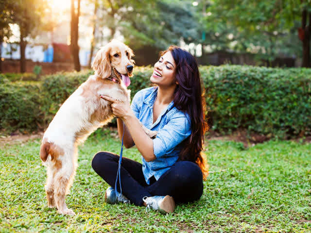People who talk to their pet dogs are smarter than others!