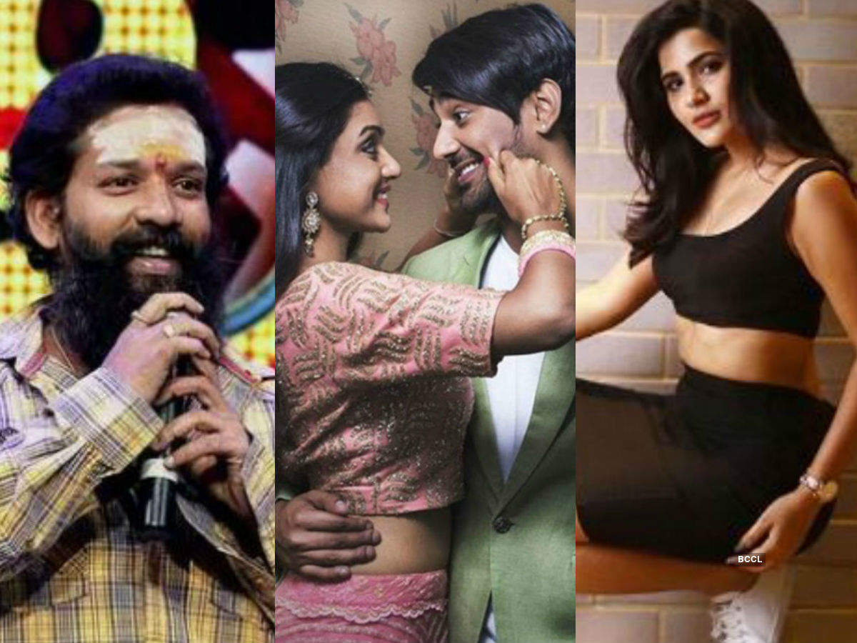 Bigg Boss Telugu 3 full and final contestants list: A look