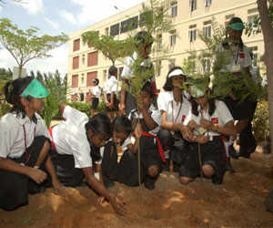 HRD Minister launches 'one student, one tree' campaign in KVs