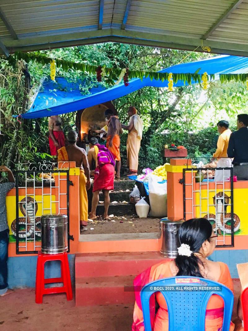 Kudla celebrates Nagarapanchami with fervour