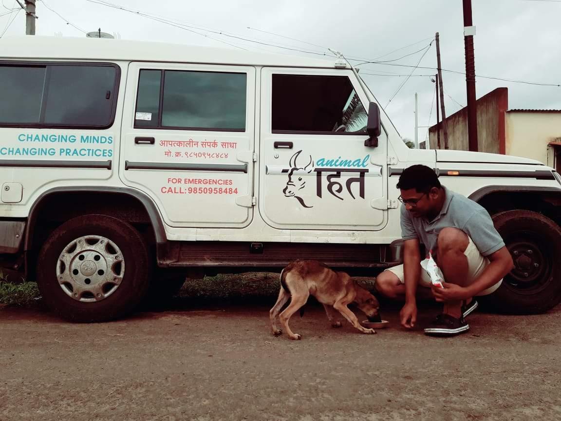 Animal Rahat  (2)