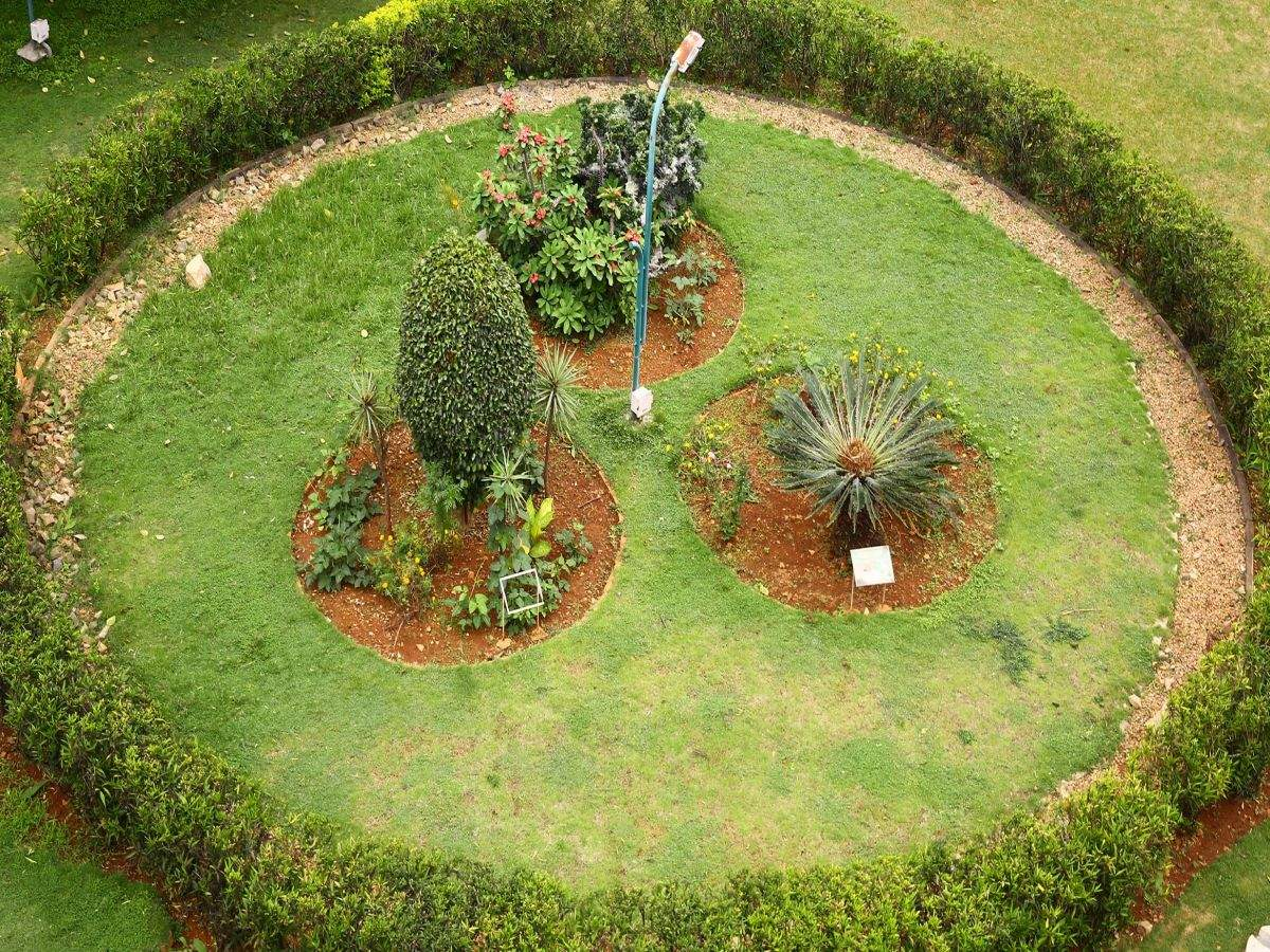 waterwise landscapng