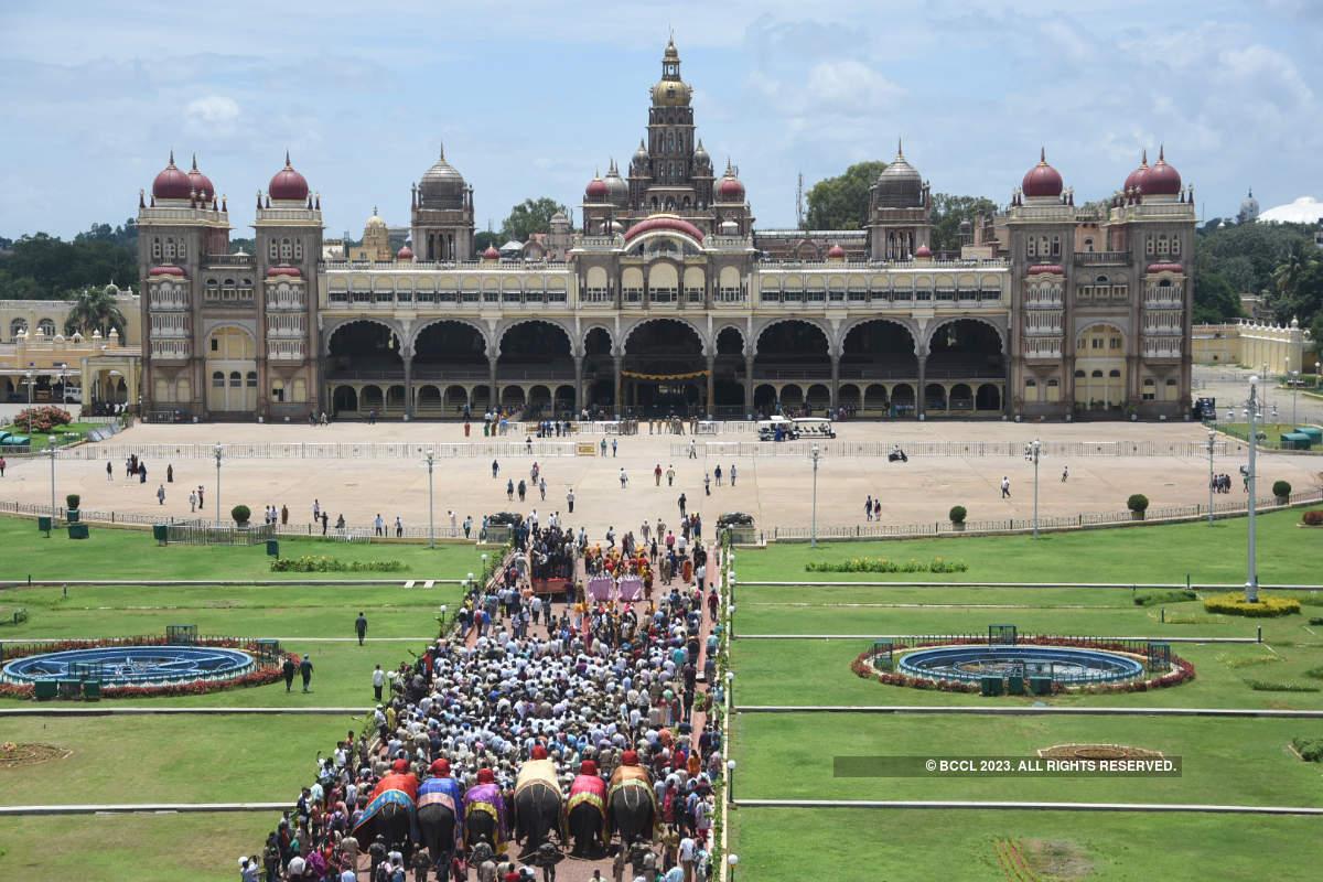 Dasara elephants reach Mysore Palace