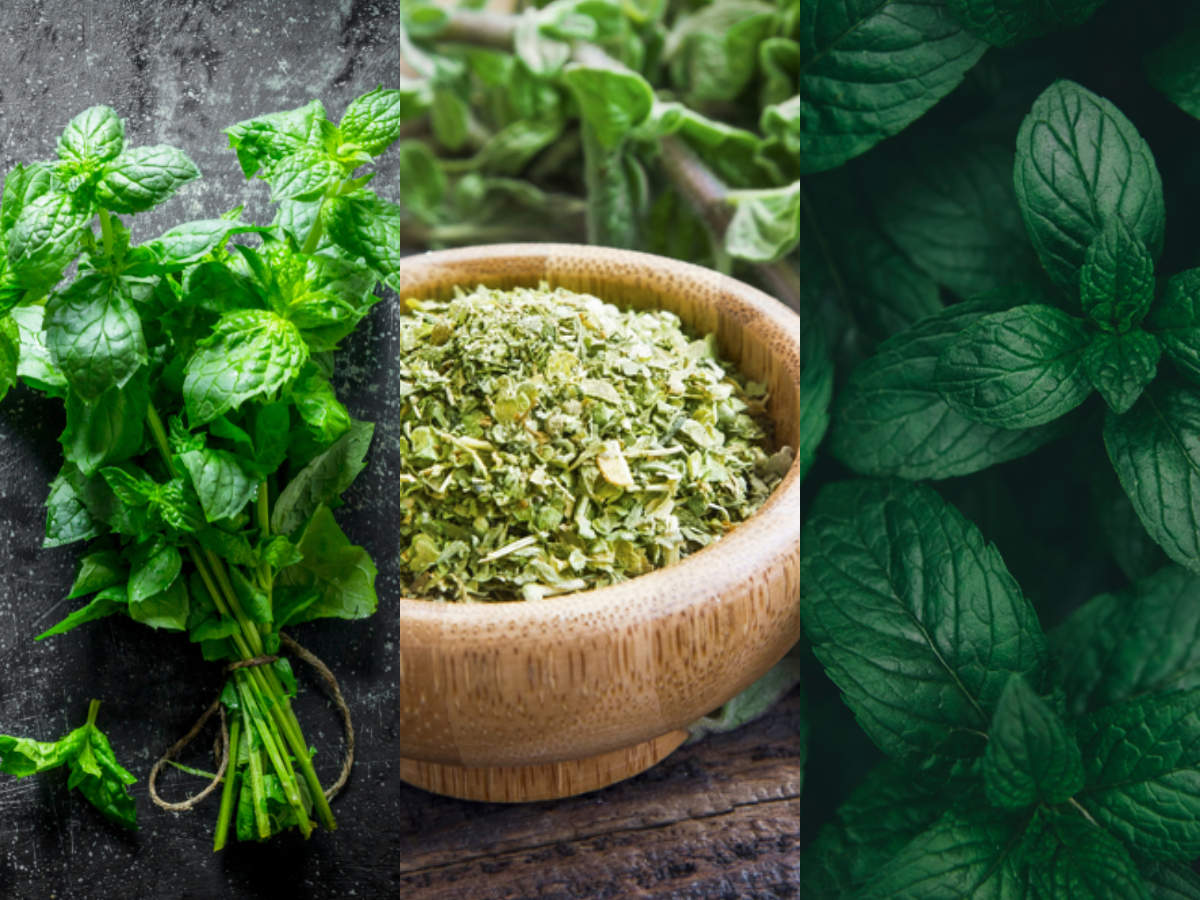 Herbs for Weight Loss: 5 Natural Herbs to Speed Up Your