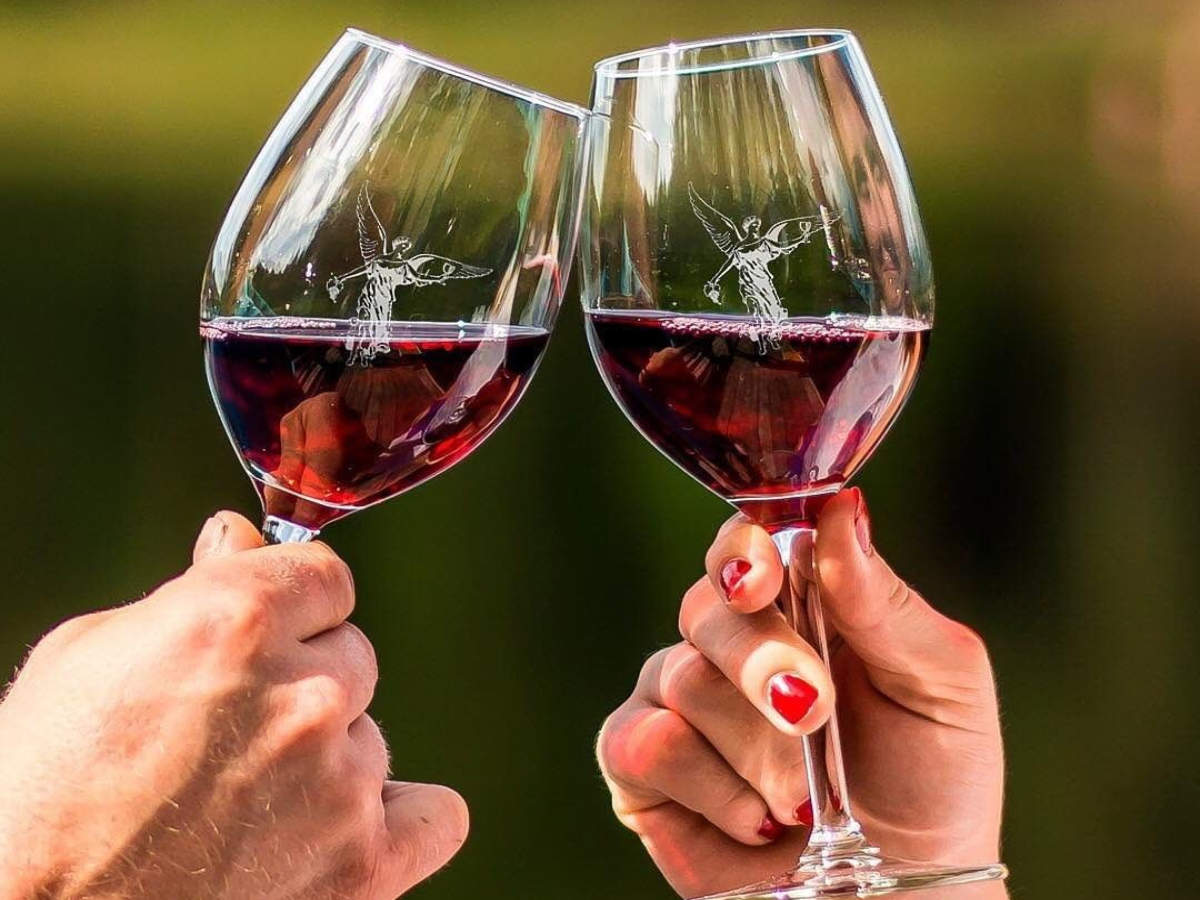 Red wine can cure anxiety and depression: Study   The Times of India