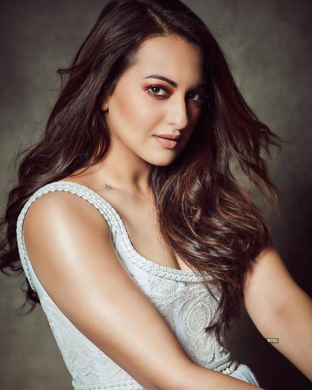 Sonakshi Sinha shuts down trolls who called her a 'buffalo'