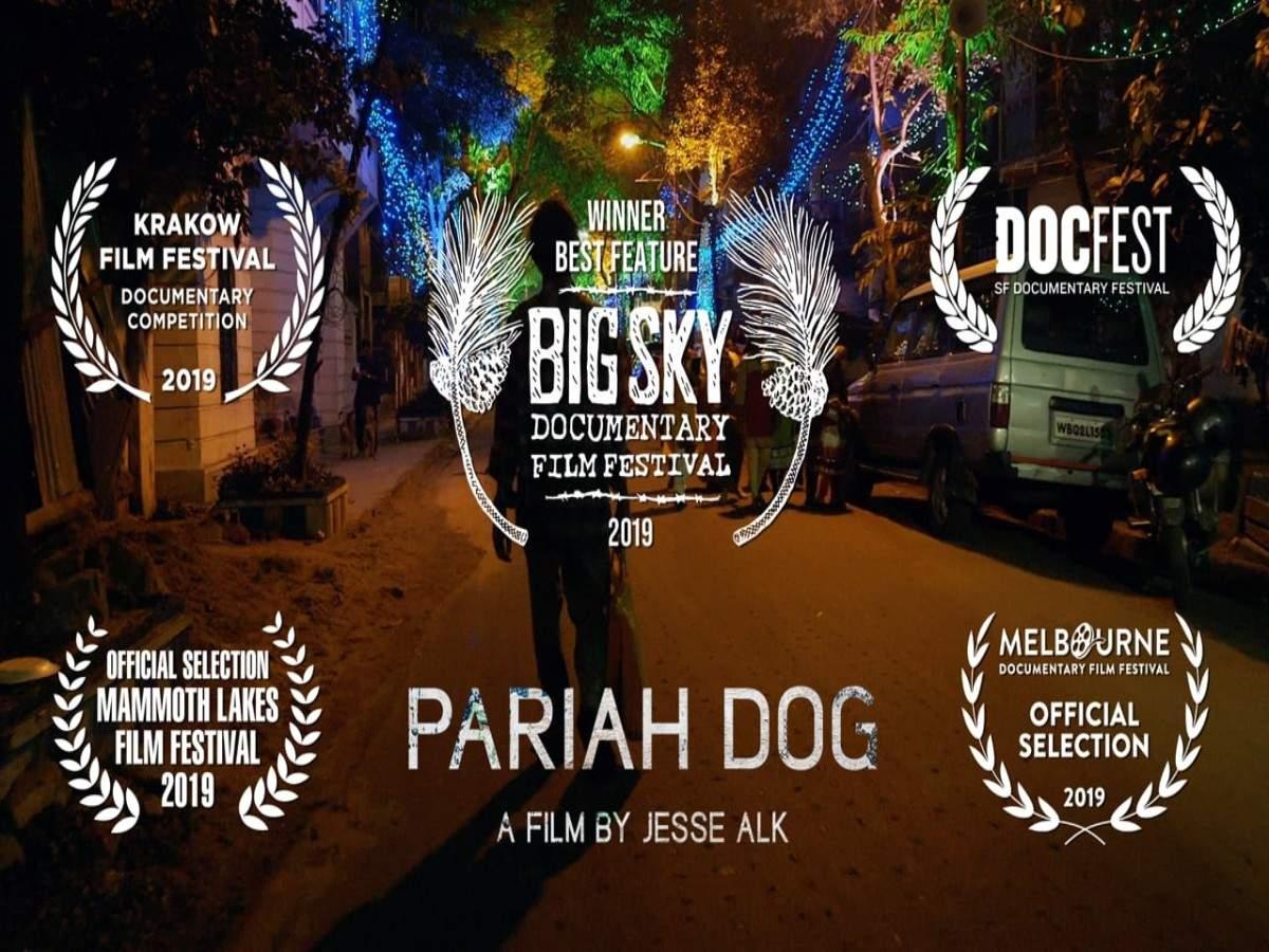 'Pariah Dog'