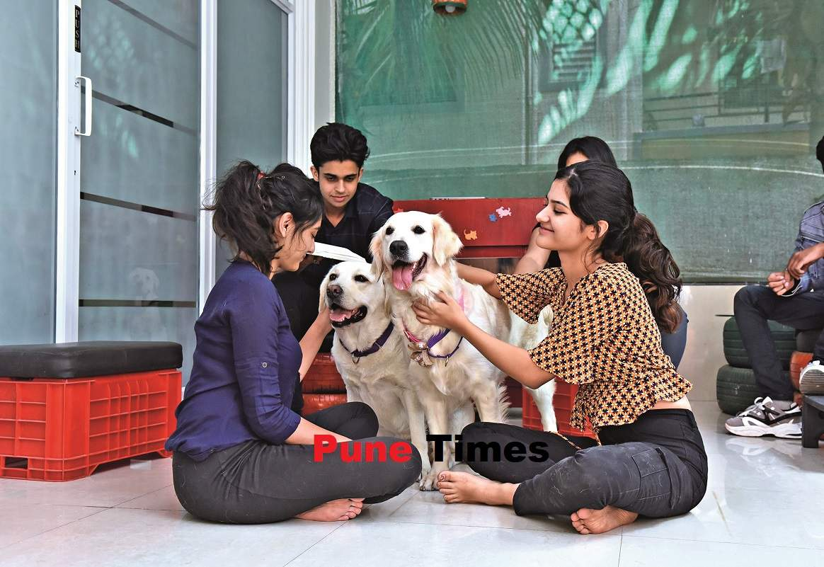 pt_pet therapy (7)