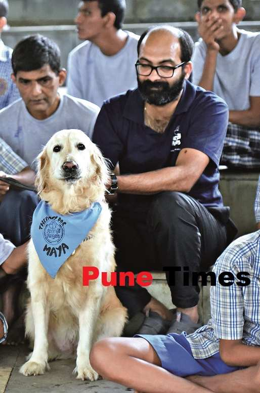 pt_therapy dogs (1)
