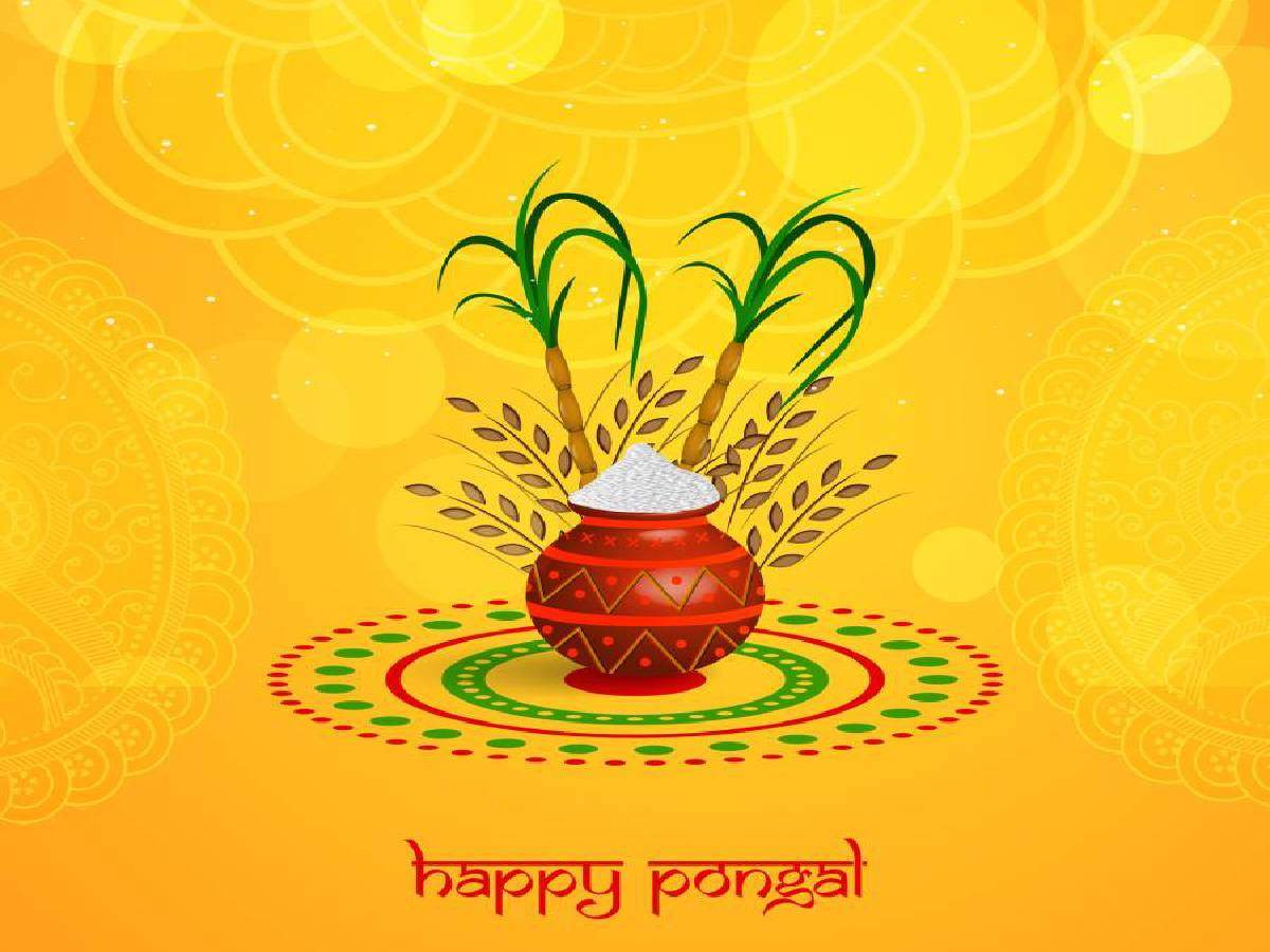 Happy Pongal 2020: Images, Cards, Wallpapers