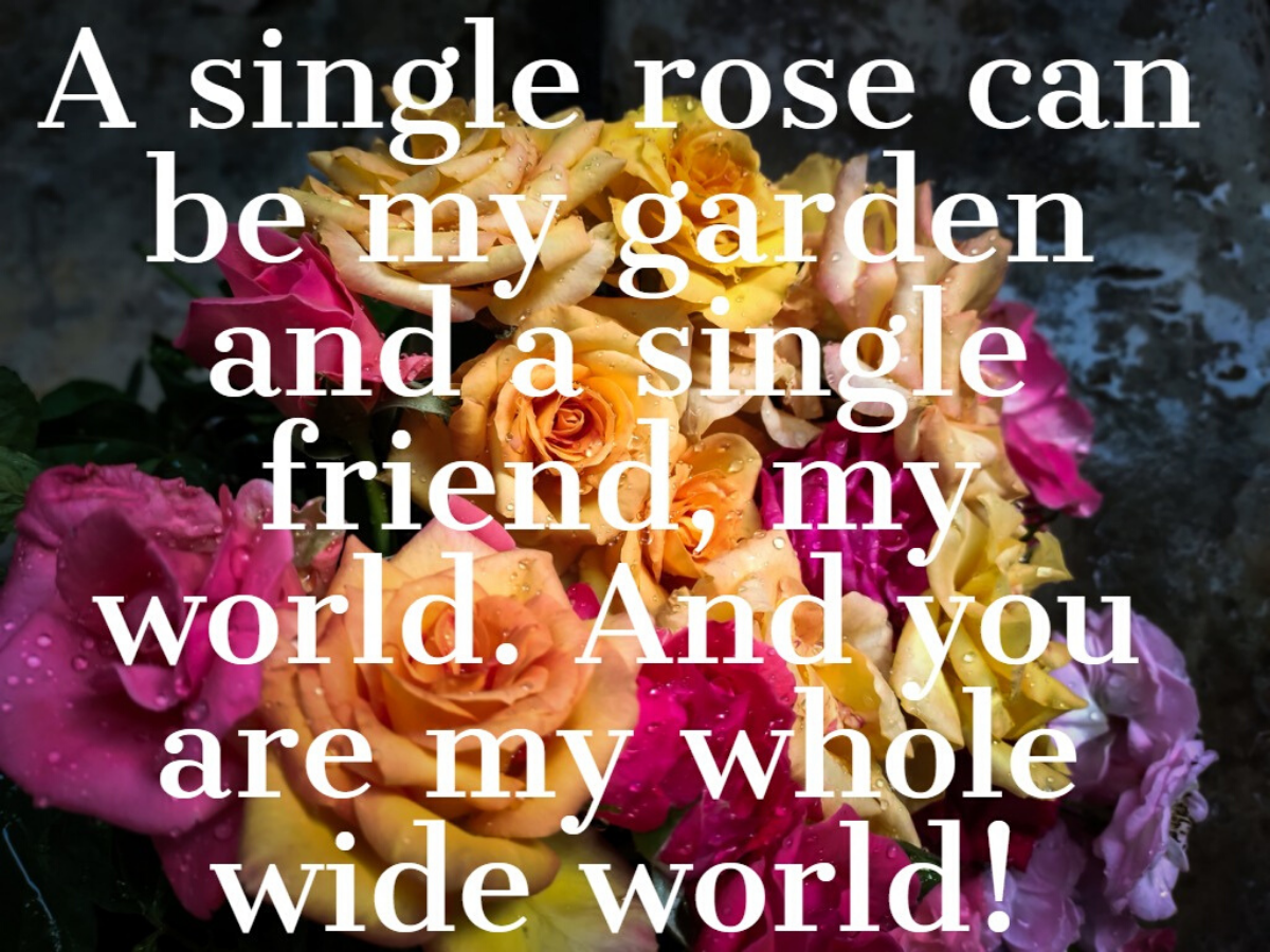Happy Rose Day 2020: Messages, Images