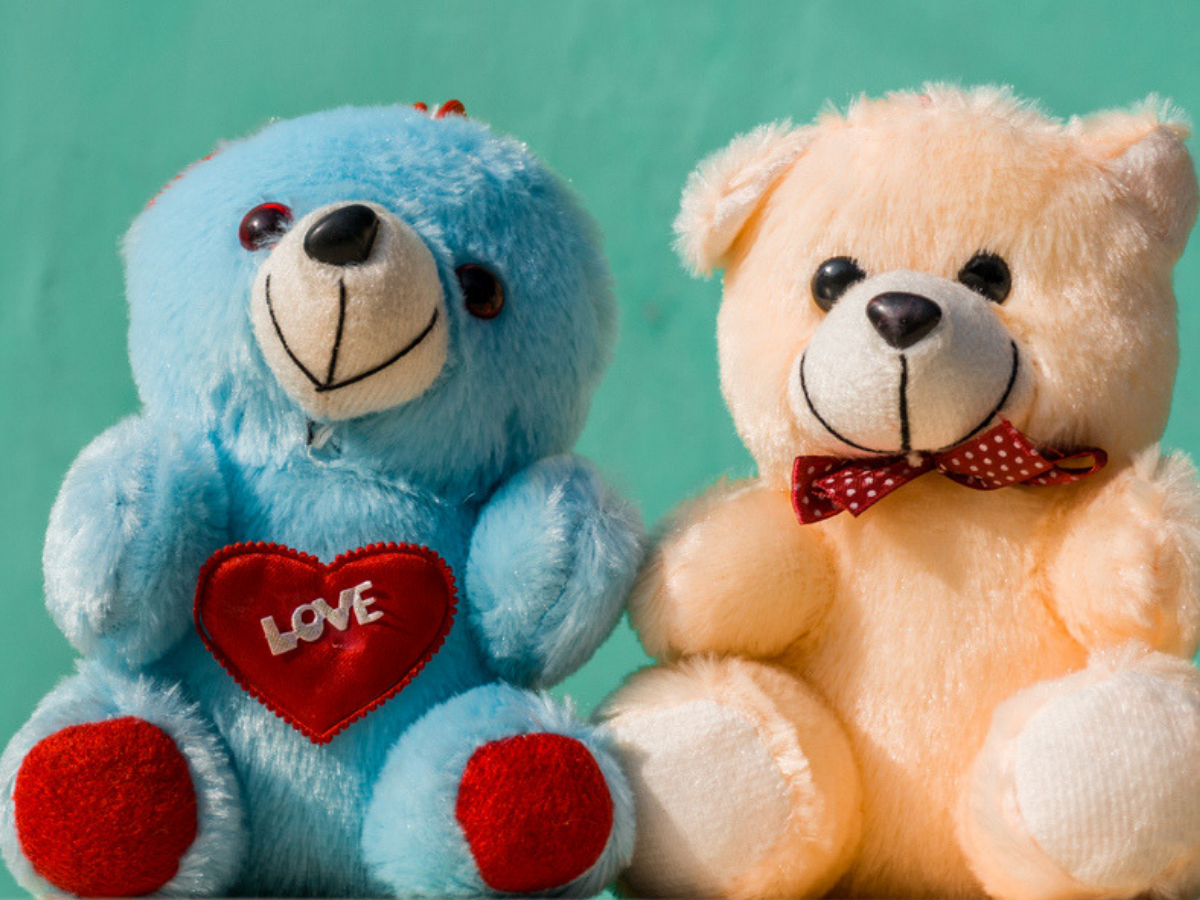 Happy Teddy Day 2020: Images, messages, wallpapers