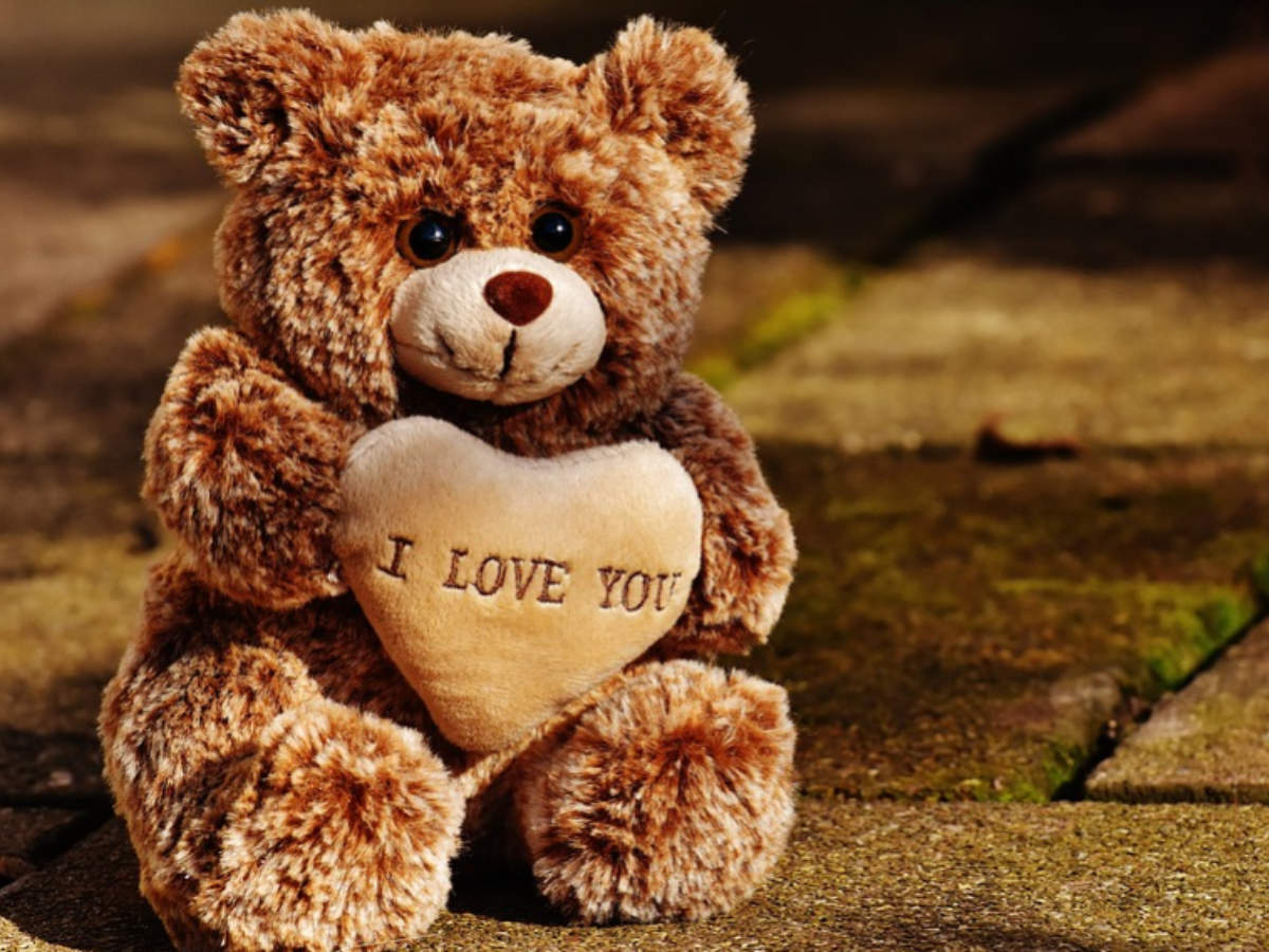 Happy Teddy Day 2020: Wishes, Messages