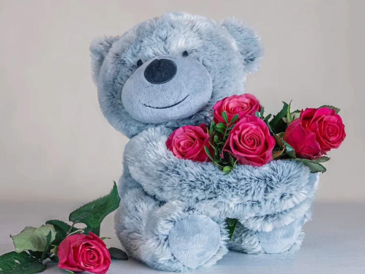 Happy Teddy Day 2020: Quotes, Images