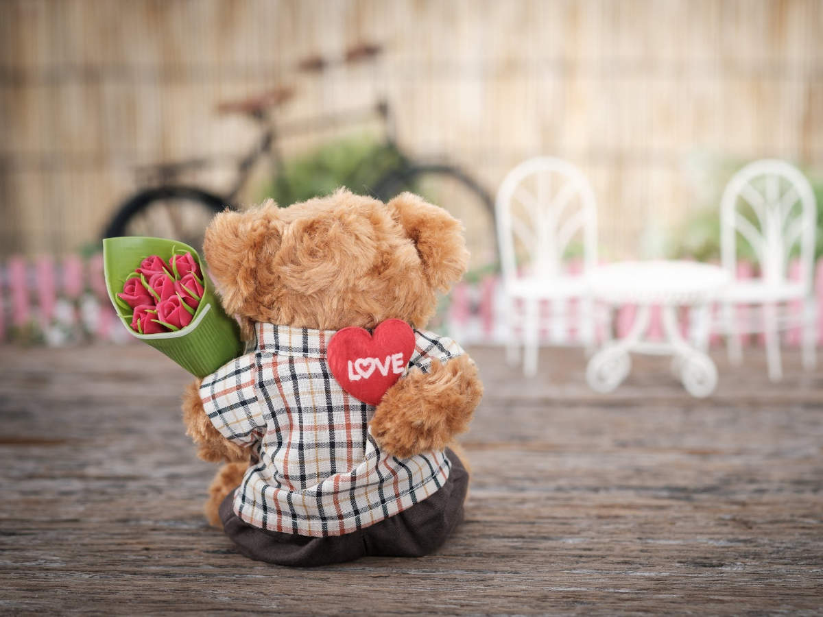 Happy Teddy Day 2020: Wishes, Quotes
