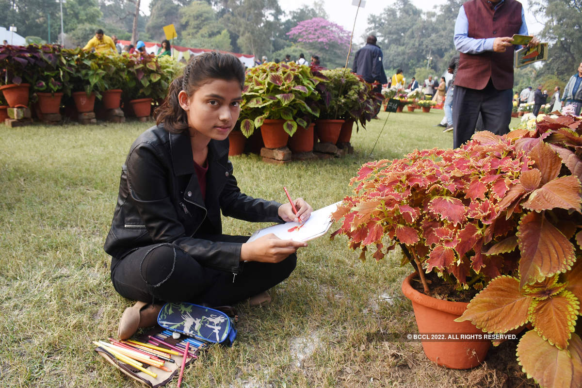 Lucknowites bask into annual flower exhibition