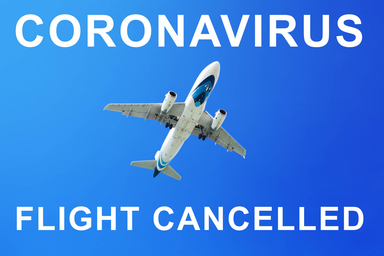India suspends all domestic commercial flights with effect from March 25 due to COVID-19