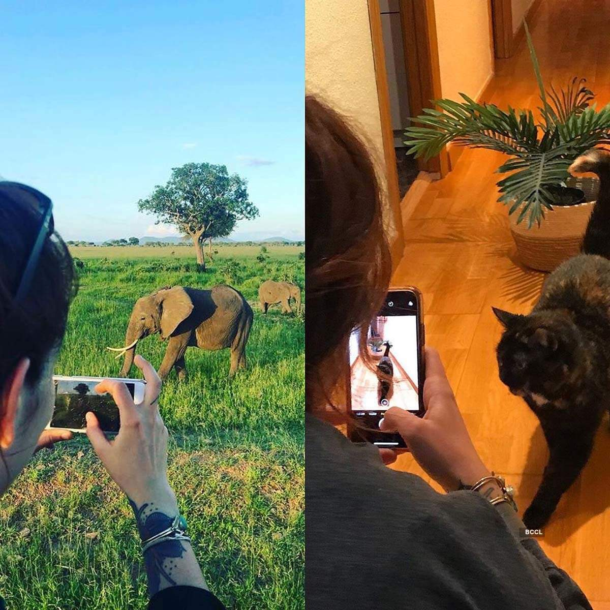 Hilarious pictures of people taking up #QuarantineTravelChallenge to recreate their holidays at home