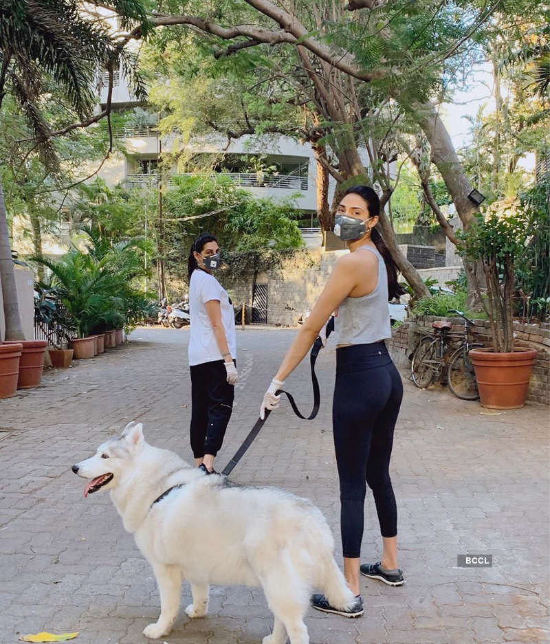 Pictures of celebrities & their pampered pets