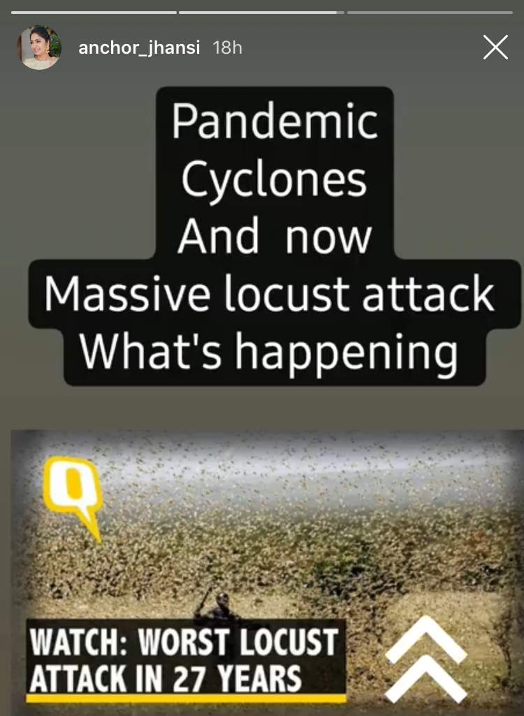Jhansi on locust attack