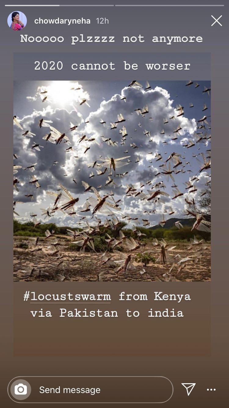 Neha on locust attack