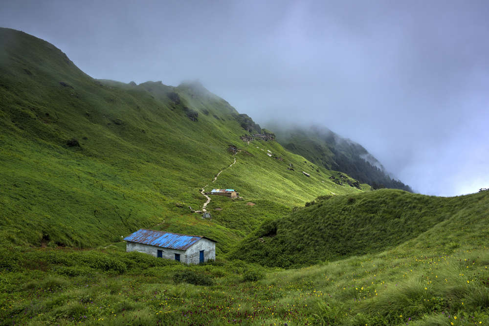 Chipla Kedar Trek—of Brahmakamal, Gupt Kailash and exotic forests