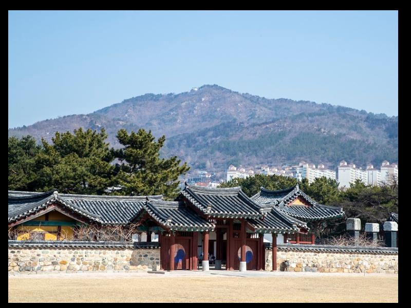Discover secrets of South Korea