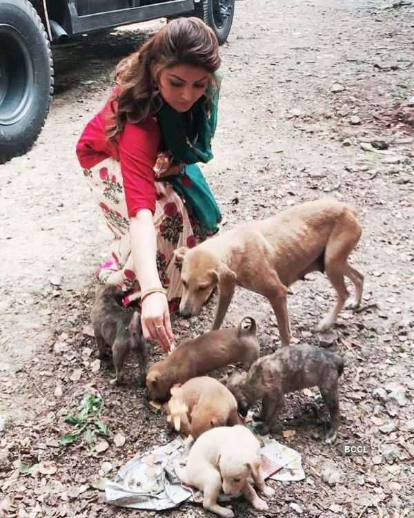 Urvashi Rautela urges people to support the voiceless amid pandemic